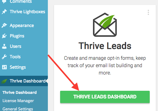 Go to your Thrive Leads dashboard
