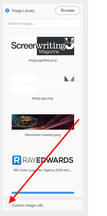 Then you'll need to switch the radio button to Custom Image URL.