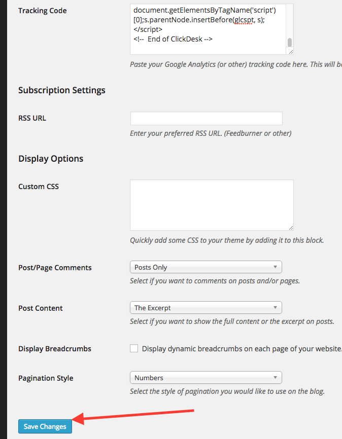 """Click the """"Save Changes"""" button at the bottom."""