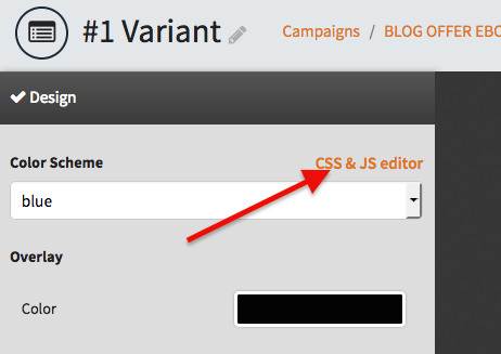 Click on the CSS & JS editor link
